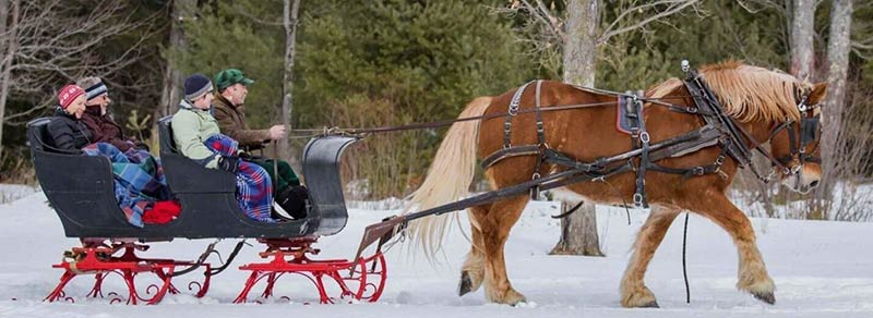 Adirondack Winter Sleigh Ride - Photo Courtesy of K. Ricord